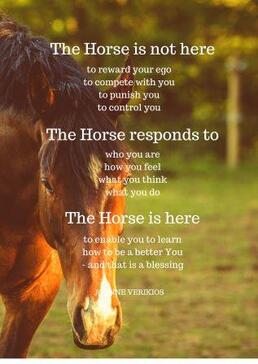 The horse is not here poem by Joanne Verikios